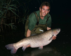 50lb+ grass carp from a trip to France.