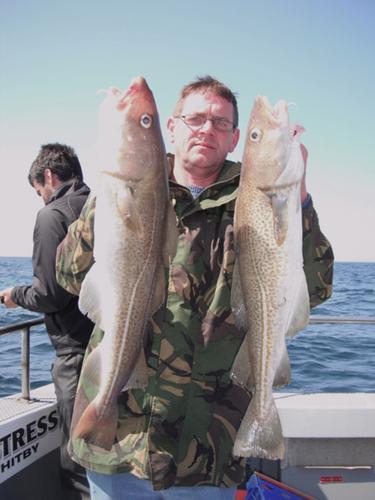 A fine brace of cod