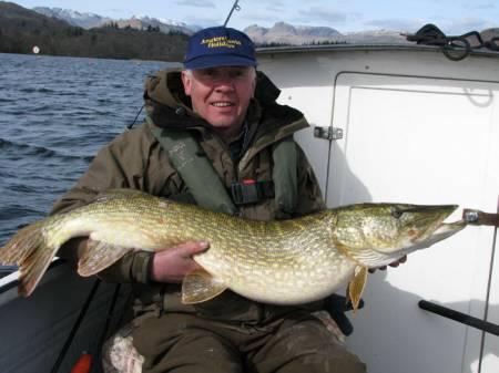 25-04 of stunning Lake District predator