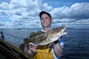 Scotland team member Scott Gibson with cod