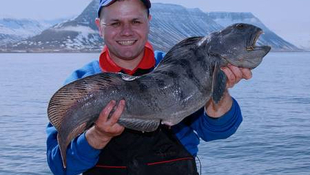 Steve with a wolf fish from the West Fjords region of Iceland.
